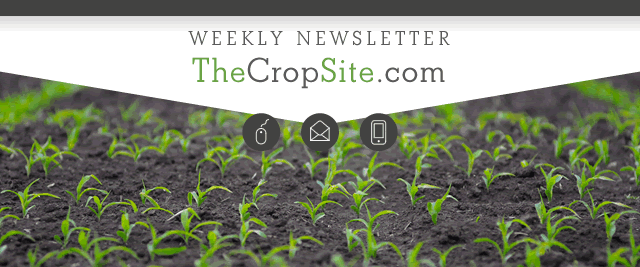 The Crop Site