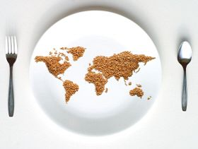 IFPRI: Brazil, China, India, Indonesia, Mexico Home to Half World's Hungry