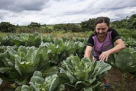 Brazil gives visibility to rural women contributing to food production