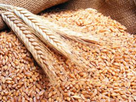 Substantial Increase in Old Crop Wheat Carry-over